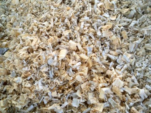 Dry Pine Wood Shavings