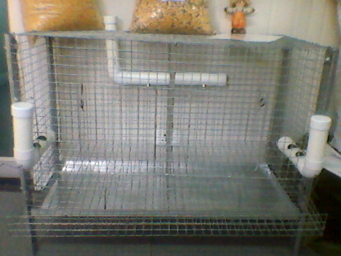 LAYER CHICKEN CAGE FOR SALE