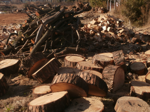 Firewood Winter end  clearance sale