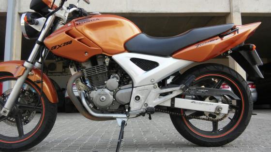 Honda CBX250 Twister
