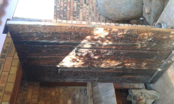 pivet sleeper door