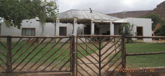 31 - Hectare farm in Touws River