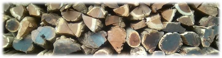 Sekelbos braai wood for sale in bulk