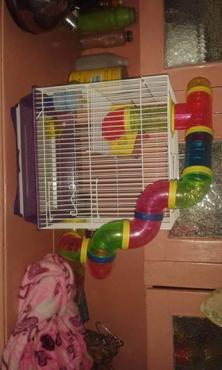 Hamsterhok te koop
