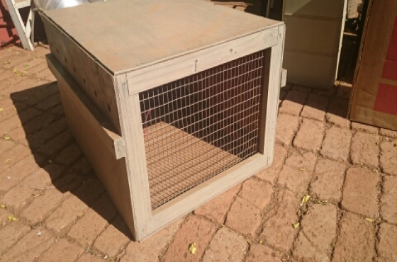 Animal Transport Box : 60cm x 50cm x 40cm