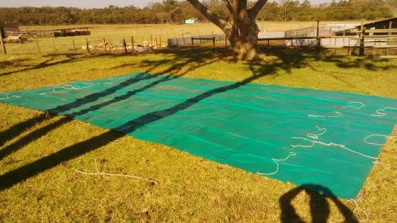 tarp for sale