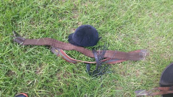 MAXAM horse saddle and extras