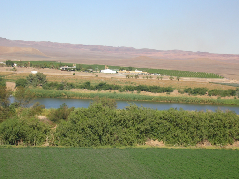 Vioolsdrift Irrigation Scheme Farm for sale