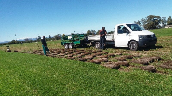 Lawndressing.compost & Instant lawn