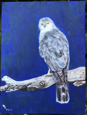 Falconpainting