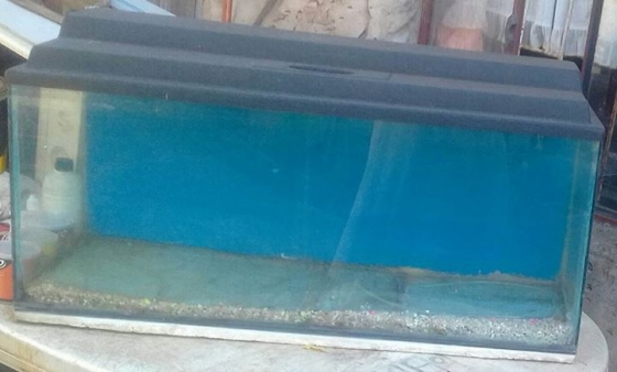 Smaller fish tank for sale