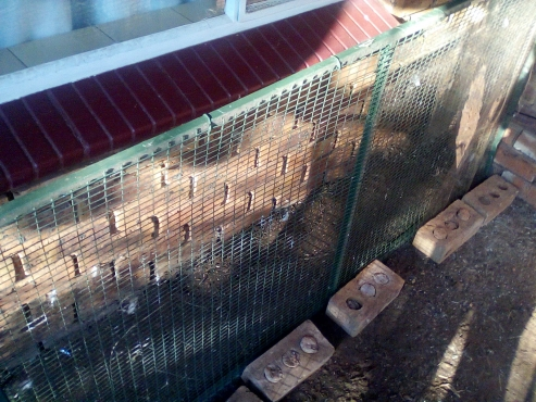 Cage panels (1,2m by 900cm) for sale