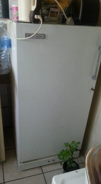 Gec stand up freezer