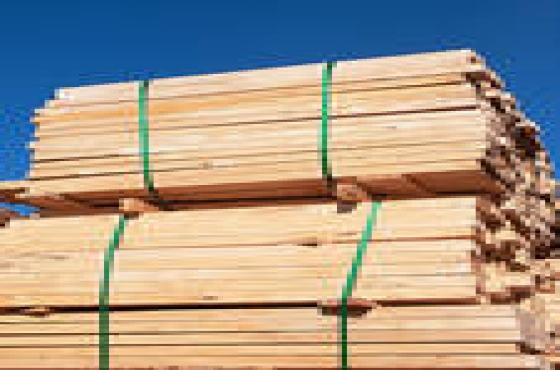 WOS Timber - in bundles or singular