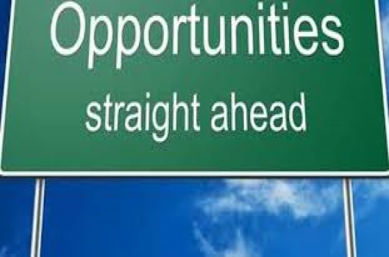 Business partner/investor wanted for various opportunities from R350k-R38m