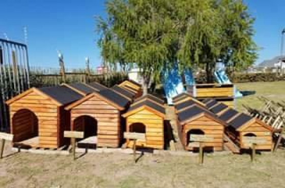 Dog Kennels/Chicken Coops/Owl Boxes
