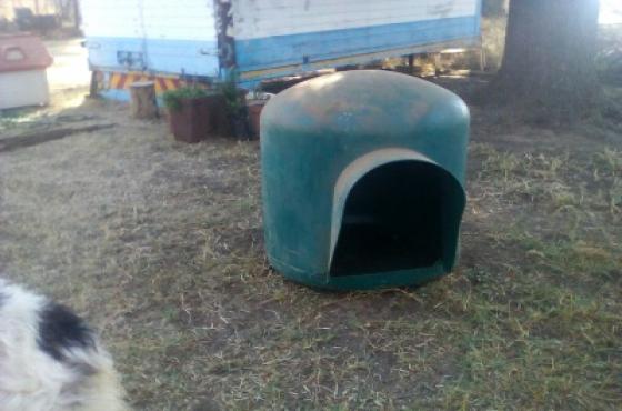 Large green igloo kennel