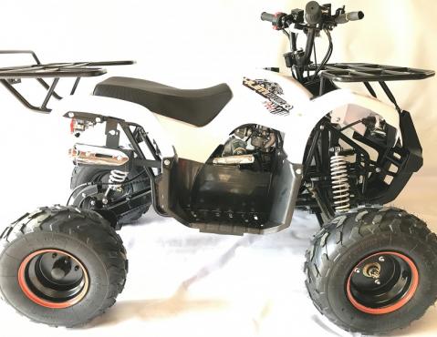 125cc Big kids quad bikes for sale - NEw 4 stroke models | Junk Mail