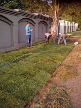 GREEN WORLD INSTANT LAWN,TOP SOIL,COMPOST & LAWN DRESSING @ BEST PRICES.