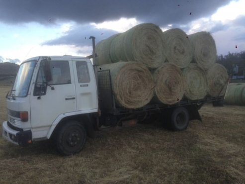 Oaten round bales Hay 5x4 suit horses, sheep, cattle, goats