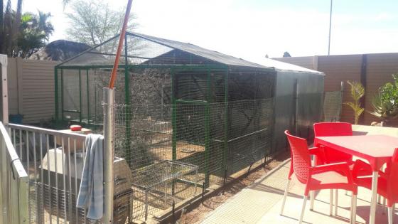 voël hok ( bird cage)