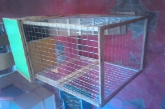 Rabbit cage for sale