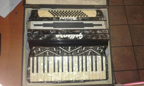 accordion in leisure in south africa junk mail. Black Bedroom Furniture Sets. Home Design Ideas