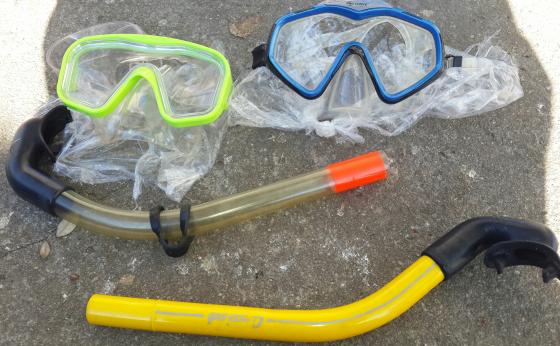 2 X Diving Masks & Snorkel.