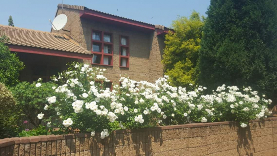 Townhouses For Sale in Middelburg | Junk Mail