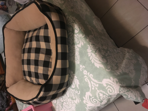Doggy Bed Excellent Condition