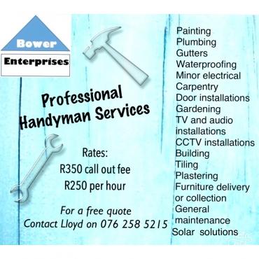 Professional Handyman Services   Junk Mail