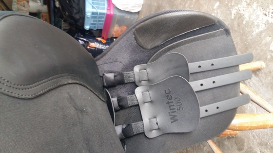 Wintec saddle for sale