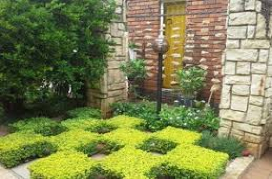 Plants for sale and Landscaping