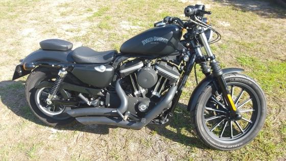 Harley-Davidson Sportster 883cc Iron 2013 Lots of extras Black Lic  12 260km R69 500-00