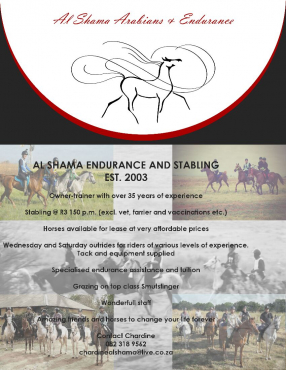 Horse riding oppurtunities
