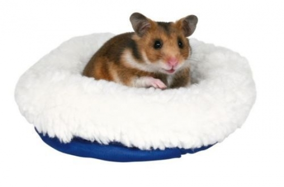 Animal Beds and Accessories