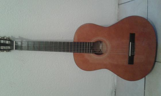 Vizcaya guitar