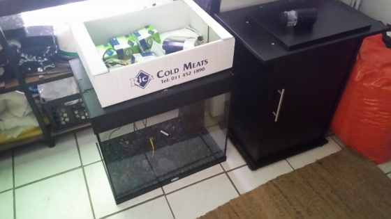 Jewel lido 120 tank with internal filter and heater and automatic feeder