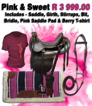 Pink Trail Ranger Complete Kit R 3 999.00