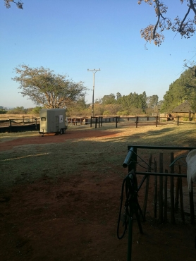 Stabling in pta north