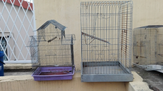 3 BIRD CAGES FOR SALE