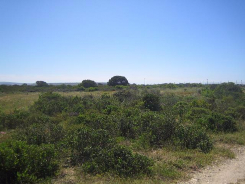 488 sqm Vacant land in Laguna Sands.