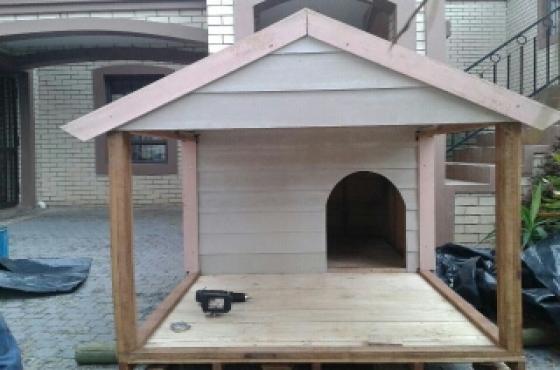 Morden dog houses