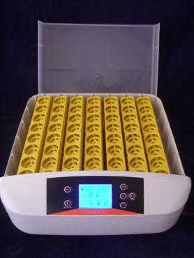 Incubators Automatic  12 volt battery AND 220 V mains
