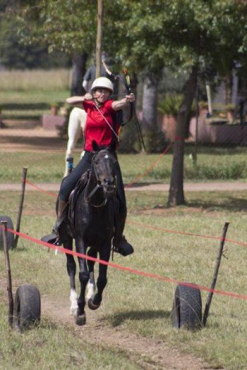 Mounted Archery Horses for adults and children