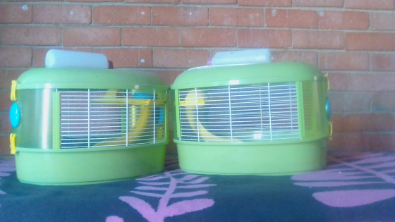 Hamster Cages for sale, R500 each, contact Lee, goedeburg Benoni area