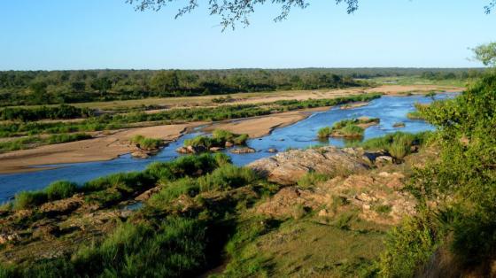 Marloth Park Wildlife Estate-Prime Located Vacant Land Plot - Next to main tar road.