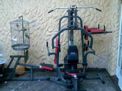 Full trojan home gym set junk mail