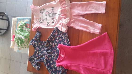 Mixed lot toddler girl clothes