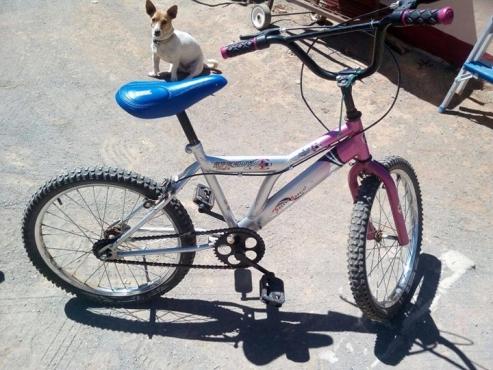 Dogters BMX fiets te koop